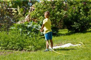 Puisītis ar šļūteni laista dārzu.