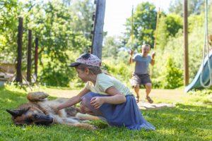 Gintera māsa bužina sunim vēderu. Ginters šūpojas