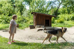 Lelde ar lielu suni ārā pie suņubūdas